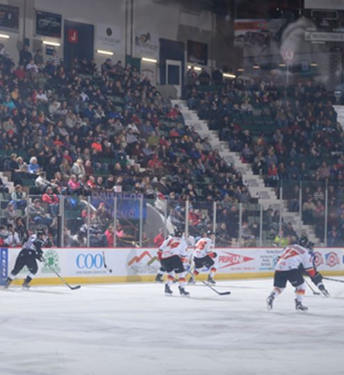 Hockey game with crowd